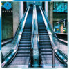 Factory Price Energy-Saving 35 Degree Vvvf Escalator for Commercial Use