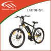26′′ Alu Alloy, Brushless, Middle Motor, 36V250W Electric Bike