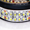 China Manufacturer Flexible 3528 SMD La Tira De LED 24V