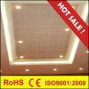 Metal Ceiling Aluminum Plain or Preforated Clip in Suspended Ceiling