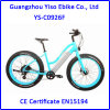 2017 New Women′s Fat Tires Motorized Beach Cruiser Bicycle with Step Through Frame