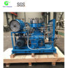 Propylene Gas Diaphragm Compressor for Different Industries Fields