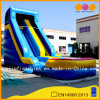 High Splash Inflatable Water Slide for Kid (AQ1068)