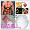 Positive 99% Bodybuilding Anabolic Steroids 3704-09-4 Mibolerone Acetate