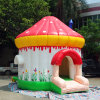 Little Kids Birthday Party Holiday Event Bouncy Inflatable Bounce House