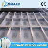 Dk100 Direct Cooling Ice Block Machine with Aluminum Plates Made Ice Moulds