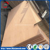 Furniture Grade Bintangor/Okoume/Birch/Pine/Poplar Commercial Plywood