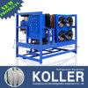 Koller 1 Ton Small Ice Block Maker Machines with Direct Cooling Way for Food Processing