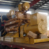 Professional Diesel Generator with Stamford Alternator