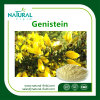 Hot Sale Best Quality Genistein 98% CAS No. 446-72-0