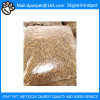 China The Best Competitive Pice Dried Mealworm