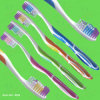 Manual Toothbrush (T004)