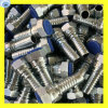 Stainless Steel 316 Material Jic Straight Hose Fitting 26711-04