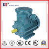 380V CE Approved Asynchronous Electric Anti-Explosion Motor