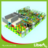 Customized Children Indoor Playground Play Structure