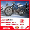 26er Carbon Complete Fat Bike 197mm with Bsa 120mm