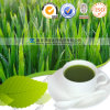Natural Product Health Care Barley Grass Powder Benefits
