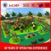 2017 Children Kids Outdoor/Indoor Playground with TUV-GS\Ce\En 1176\SGS\Ohsas18001\ISO9001\ISO14001 Certificate Wooden Series