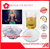 Injectable Boldenone Acetate 2363-59-9 Cutting Cycle Steroids