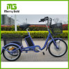 "20"" Small Three Wheel Electric Tricycle for Sale"