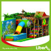 China Leader Company Wood Series Interior Playground Frame