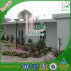 Nice Design Comfortable Living Green Garden House