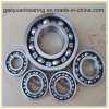 (6030) All Kinds of Bus Bearing