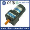 6W Small AC Reversible Gear Motor