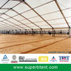 Large a-Framed Tent for Farmland Cover