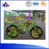 China Manufacturer Kids Bike and Cars