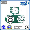 Motorcycle Gasket Kits for Booster/Motorcycle Gasket Set (HJ125)