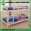Pine Wood Bunk Bed in Natural Color
