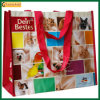 Eco-Friendly Customized Gift Shopping Laminated Bag (TP-LB212)