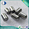Facoty Supply High Carbide Button for Drilling