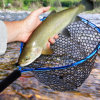 Wholesale Fly Fishing Trout Fishing Rubber Mesh Landing Net