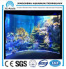 Transparent Customized Viewing Acrylic Panel Aquarium