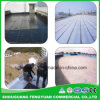 Reliable Factory Sbs/ APP Modified Waterproof Membrane with Low Price