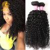 Malaysian Curly Hair Afro Kinky Curly Weave Human Hair 4 Bundles Malaysian Virgin Hair Deep Wave Kinky Curly Virgin Hair Bundles