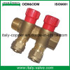 OEM&ODM Quality Brass Forged 2-Way Manifold (AV9068)