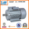 LTP YC Series 1 Phase Motor