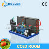 Commercial Medium Capacity Freezer Room Made by Koller
