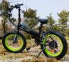 2017 New Design 36V 250W Folding Electric Bike with Big Stone C500 Panel