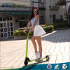 China Supplier Folding Adult Electric Kick Scooter
