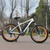 Fat Tire MTB Ebike with 500W 8fun Motor