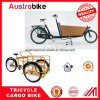 Cargo Bike Cargo Tricycle Electric Cargo Bike Pizza Delivery Ebike