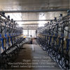 Automatic Dairy Cow Milking Parlor System with Milk Flow Meter