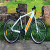 New Products 700cc Mountain Electric Bike with Hidden Battery