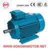 NEMA Standard High Efficiency Motors (447TS-2-200HP)