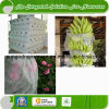 UV Nonwoven for Agriculture and Crop Protection