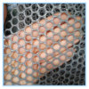 Green Diamand Plastic Wire Mesh
